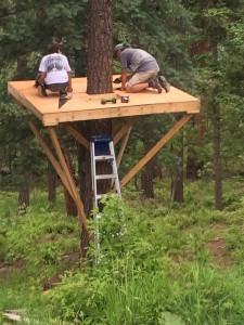 treehouseplatform2